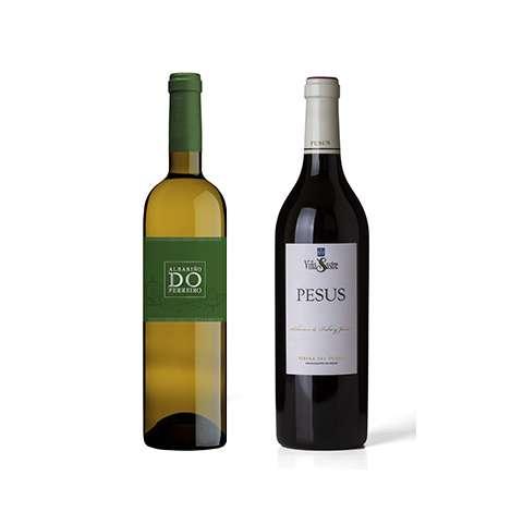 """Junio 2.019 </br></br> El vino Pesus 2.015 de Bodega Hnos. Sastre, se impone en la """"Cata de los Cinco Mejores Vinos Tintos de España"""" y Do Ferreiro de Gerardo Méndez como Mejor Vino Blanco de España"""